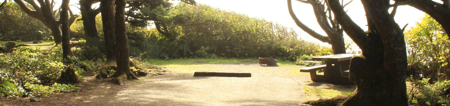 Picture of campsite with picnic tableCampsite A25