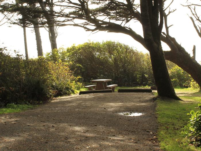 Picture of campsite with picnic tableA27