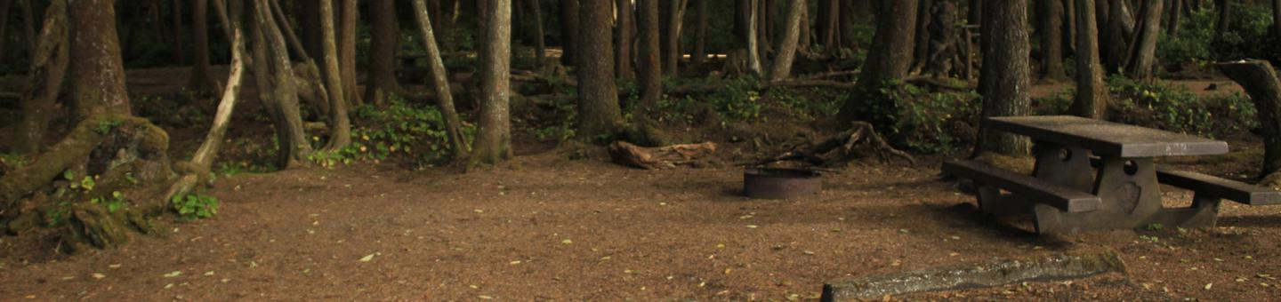 Picture of campsite with picnic tableCampsite A28