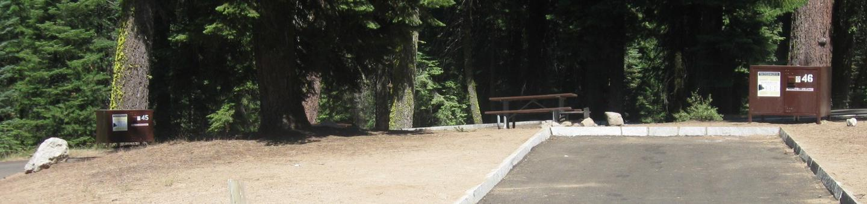 Site 46, Partial Shade, Near Creek