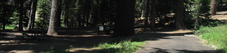 Site 60, Shady, Near Creek and Meadow