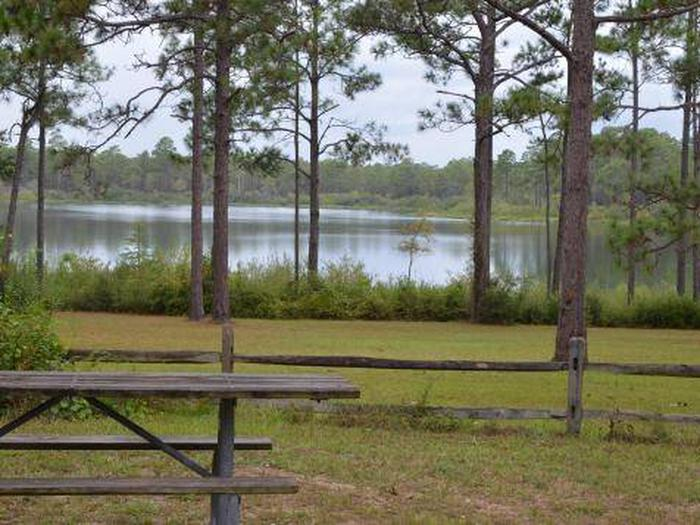 Camel Lake Campground-Site 1
