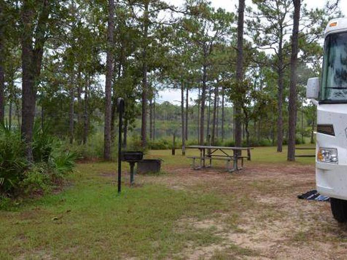 Camel Lake Campground-Site 2
