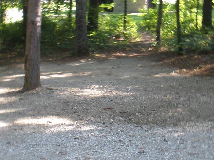 Dogwood Site 24