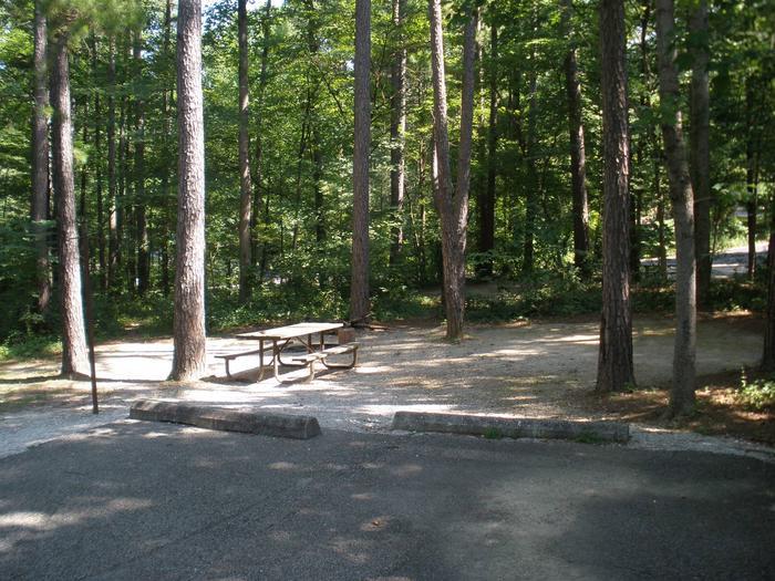 Dogwood Site 25