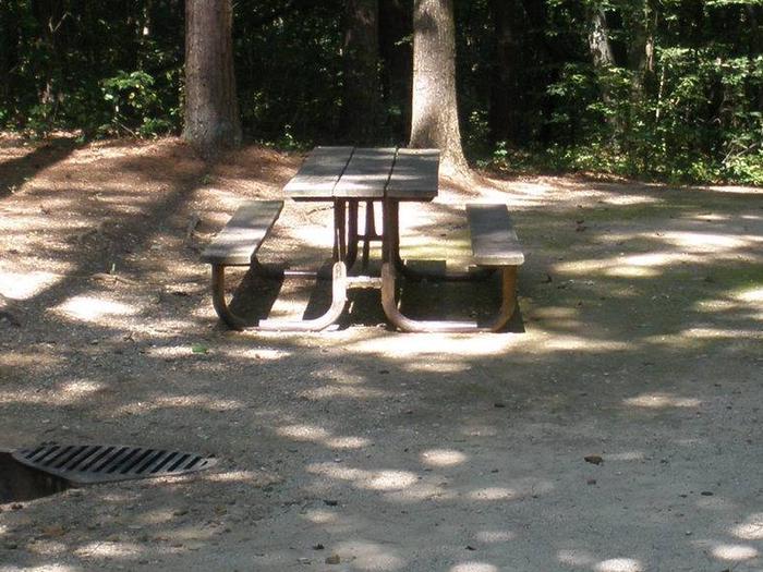 Dogwood Site 28