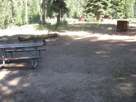 site 77, no generator loop, partial shade