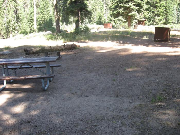 Site 77, Partial Shade