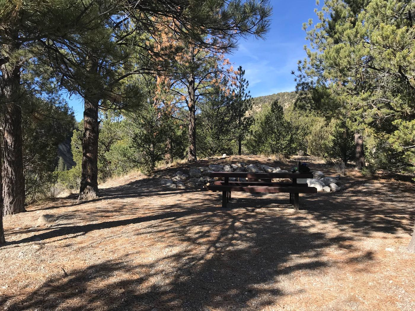 Joes Valley Campground Site 8