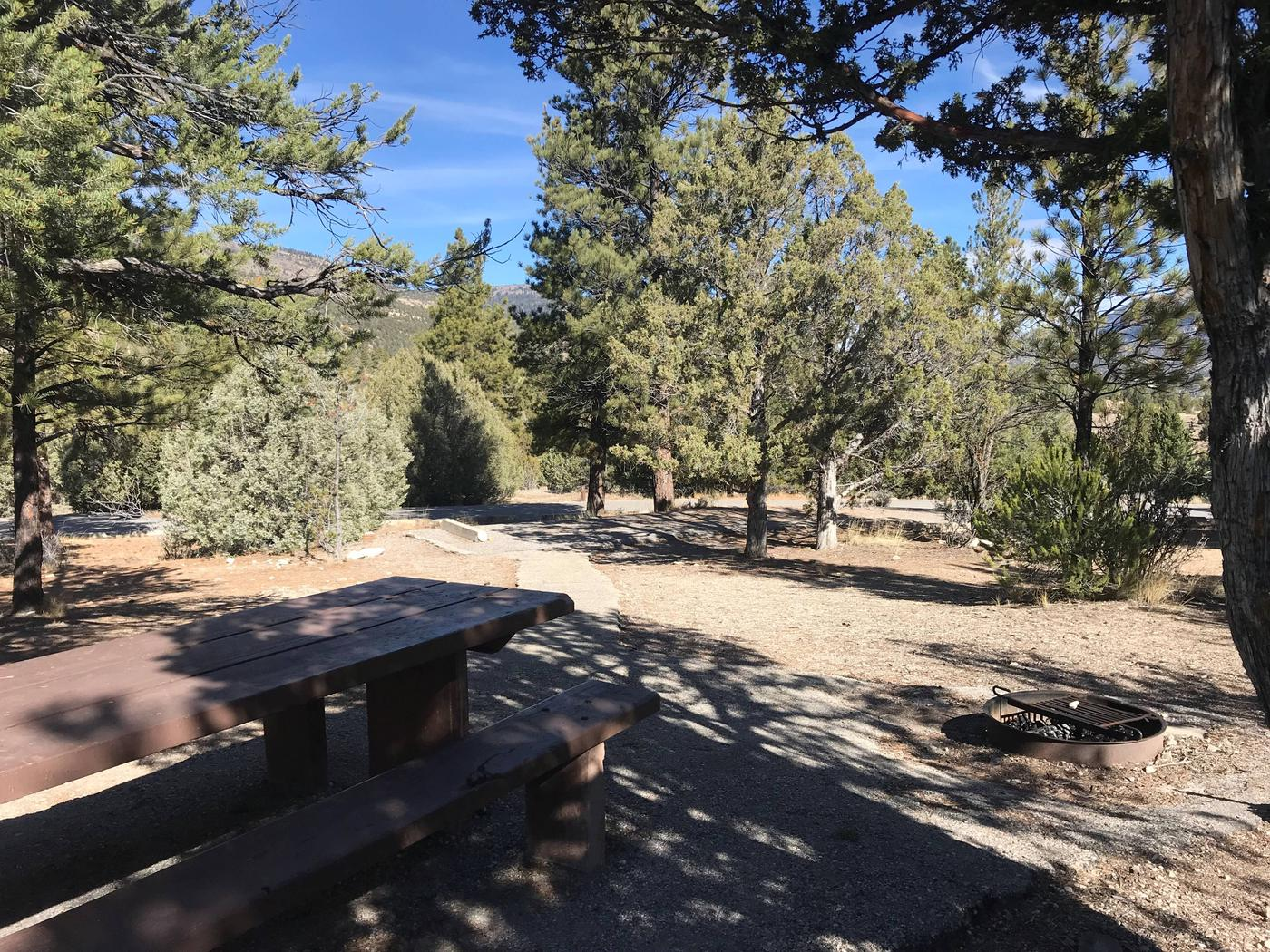 Joes Valley Campground Site 11