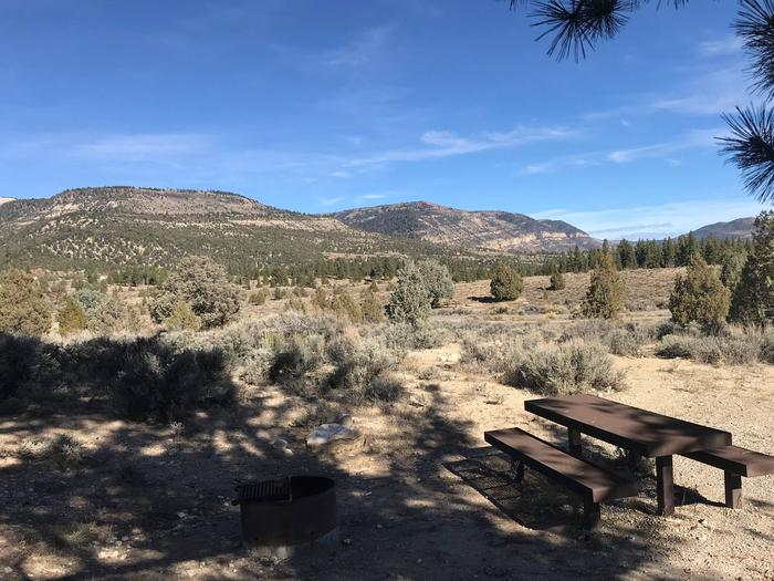 Joes Valley Campground Site 20