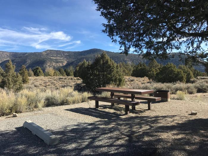 Joes Valley Campground Site 24