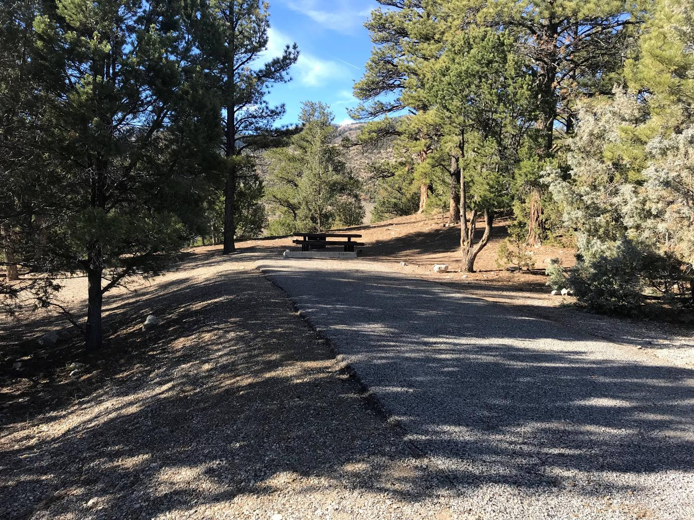 Joes Valley Campground Site 23
