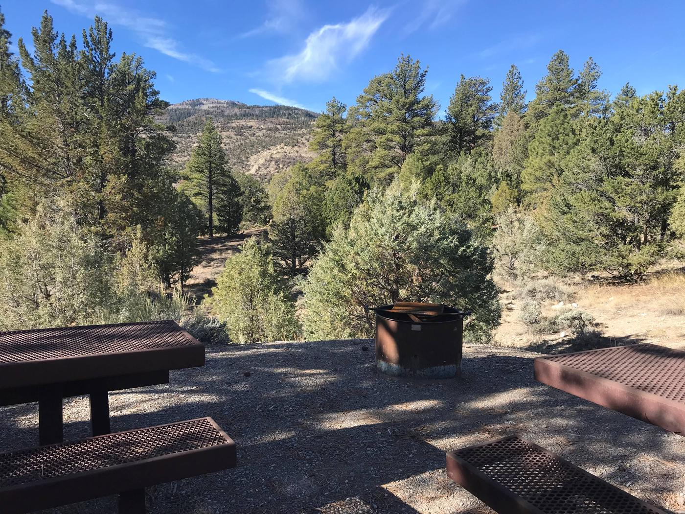 Joes Valley Campground Site 25