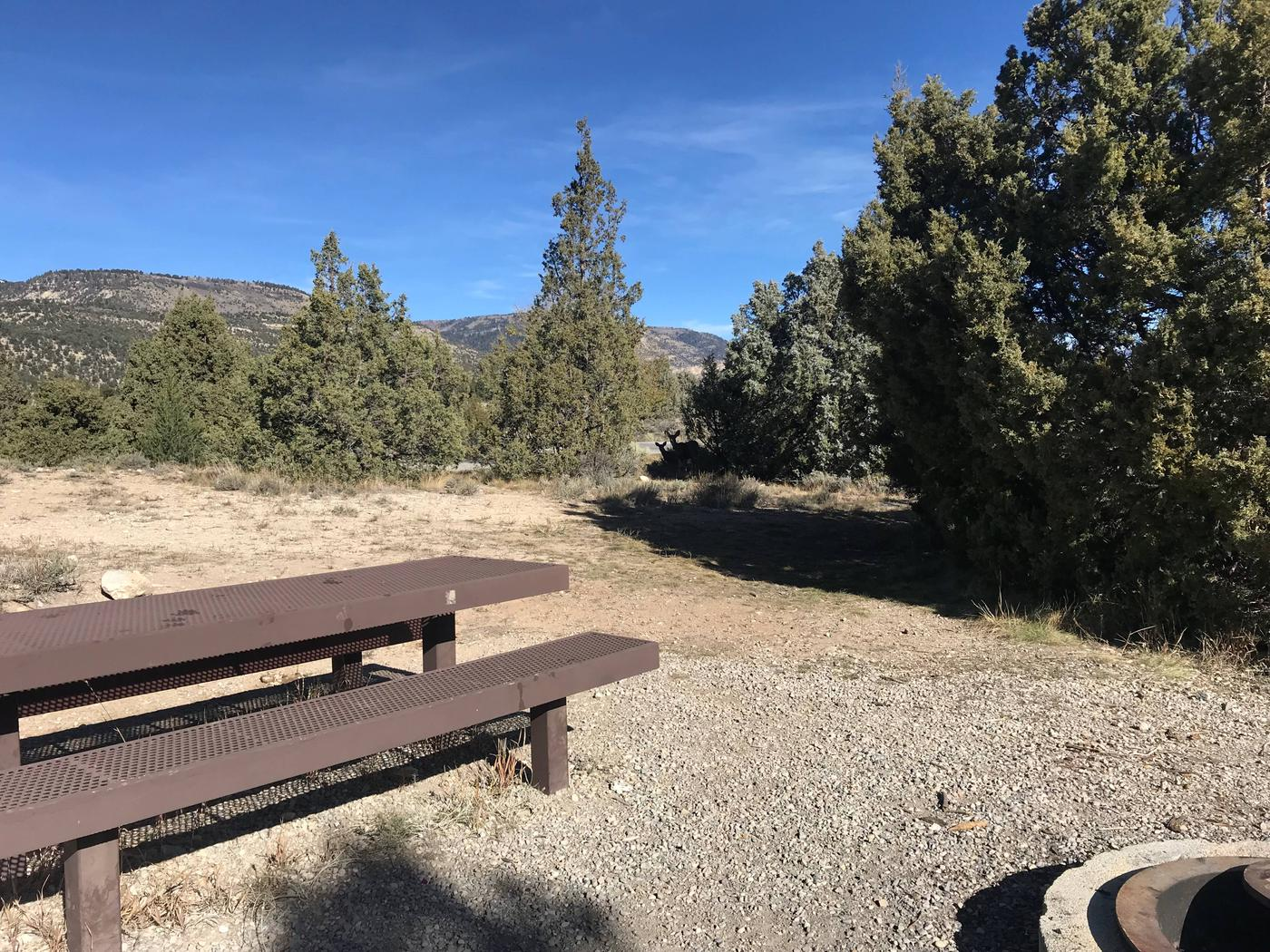 Joes Valley Campground Site 28