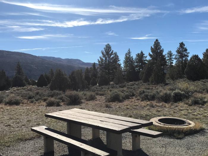 Joes Valley Reservoir Campground Site 37