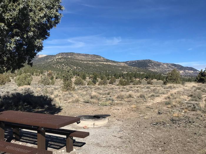 Joes Valley Reservoir Campground Site 42