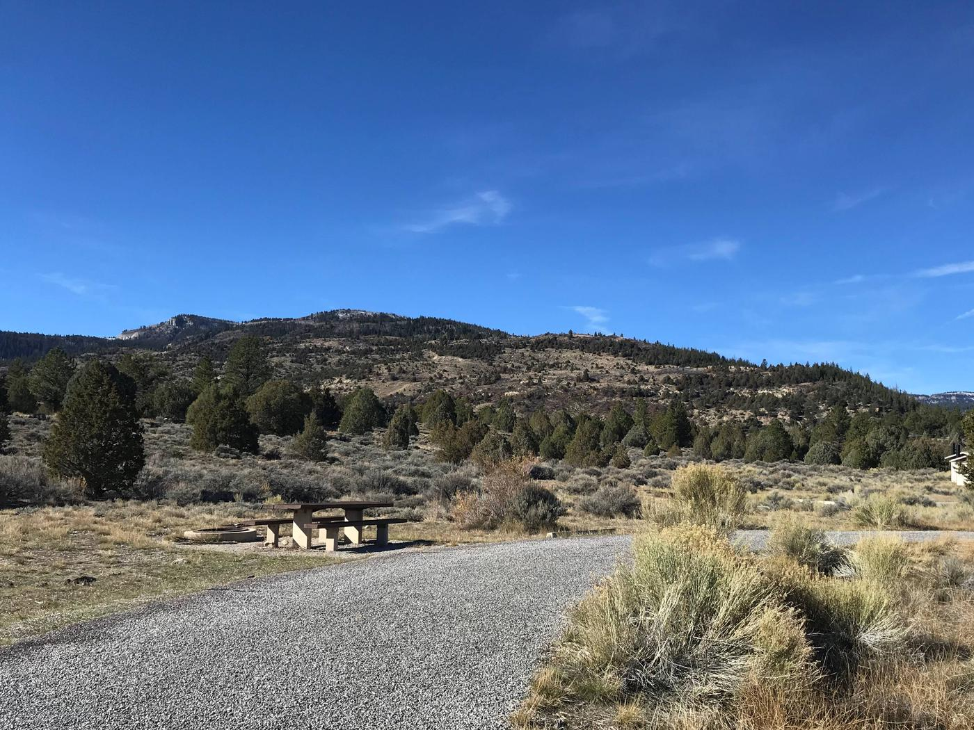 Joes Valley Reservoir Campground Site 41