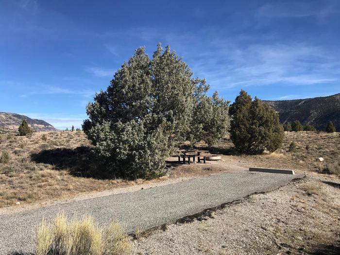 Joes Valley Reservoir Campground Site 40