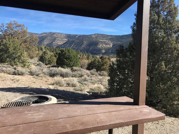Joes Valley Reservoir Campground Site 46