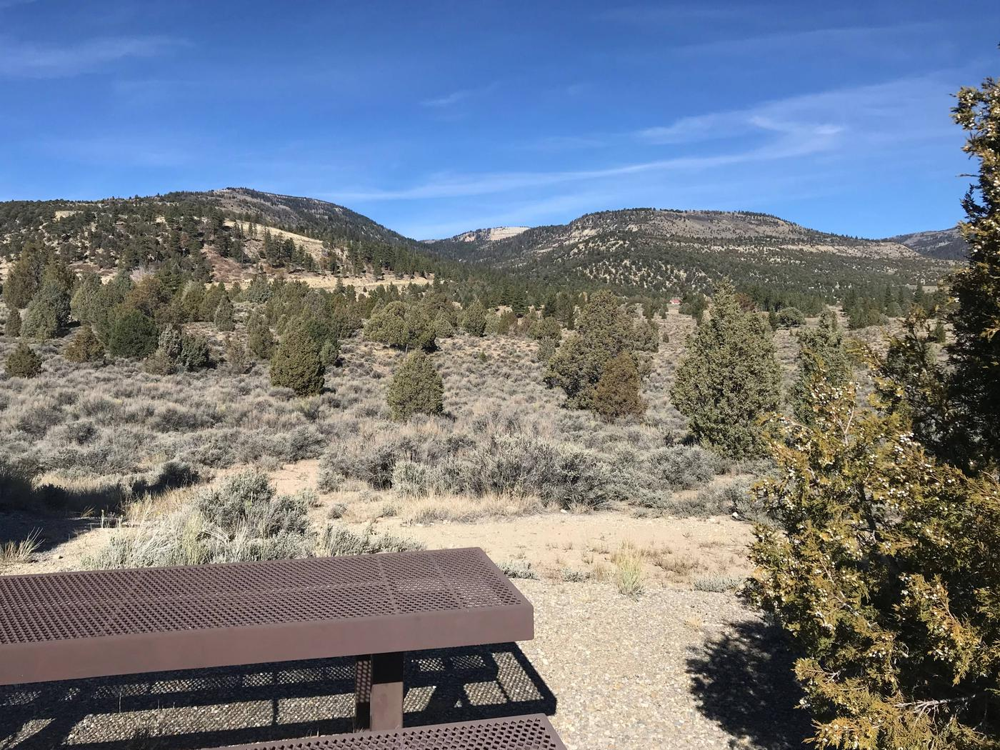 Joes Valley Reservoir Campground Site 45