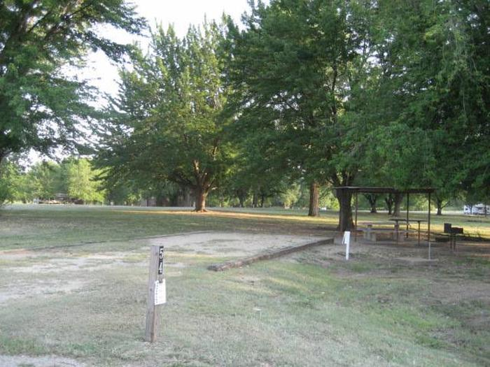 Coon Creek Campsite #54