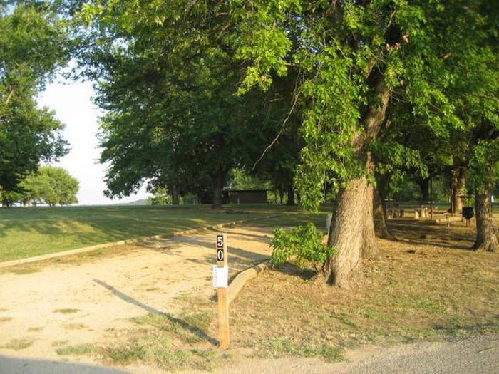 Coon Creek Campsite #50