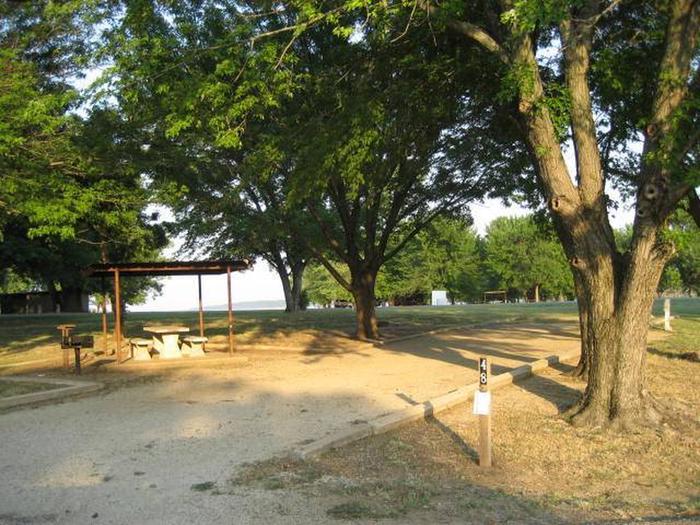 Coon Creek Campsite #48