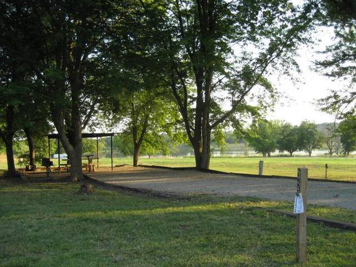 Coon Creek Campsite #31