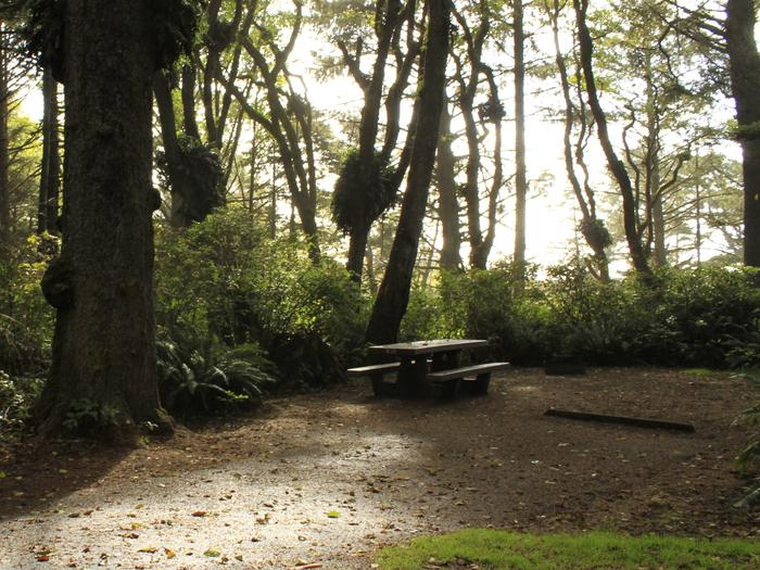 Picture of campsite with picnic table.Campsite A35