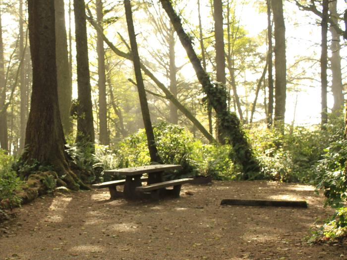 Picture of campsite with picnic table. Campsite A36