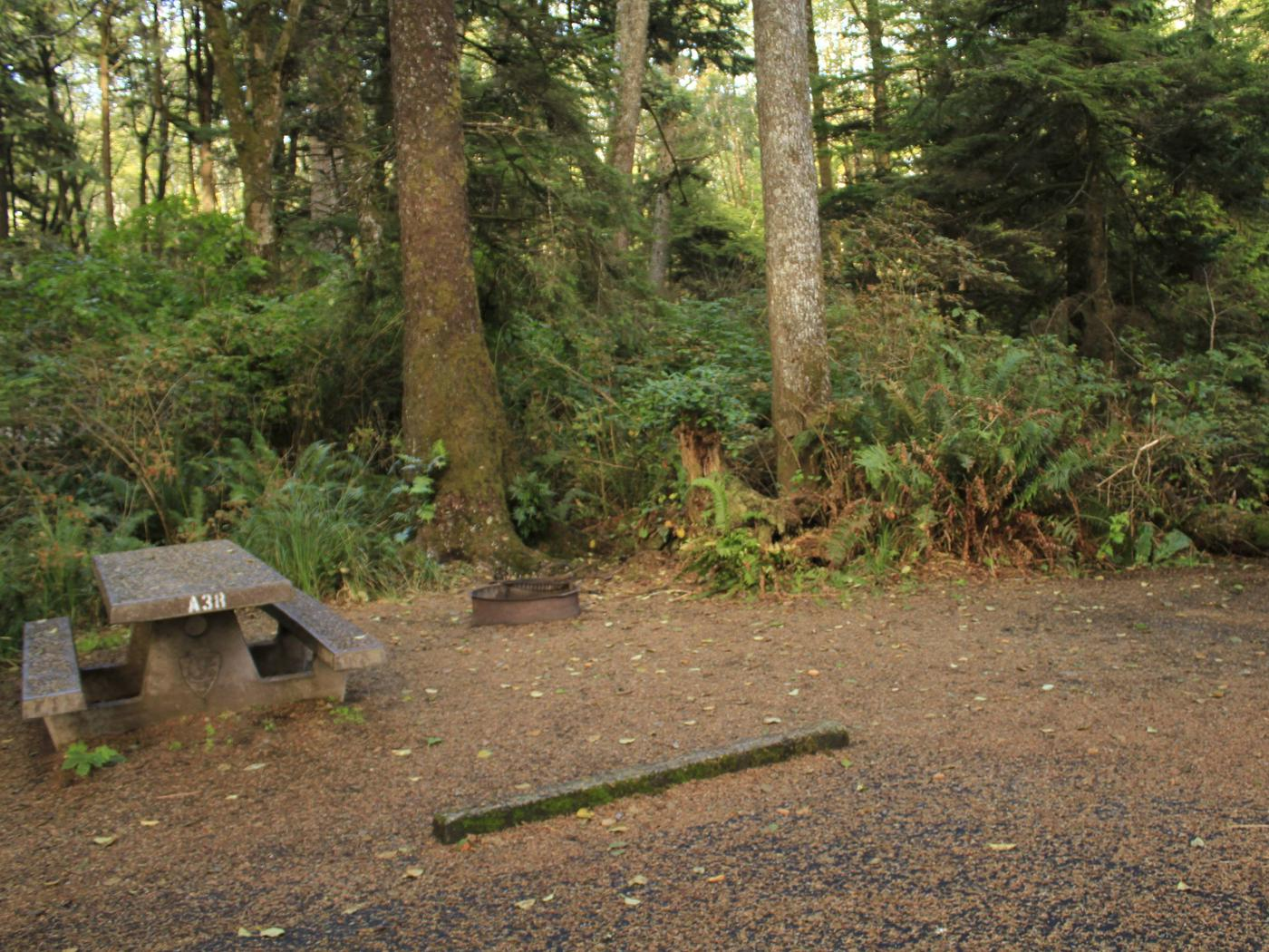 Picture of campsite with picnic table. Campsite A38