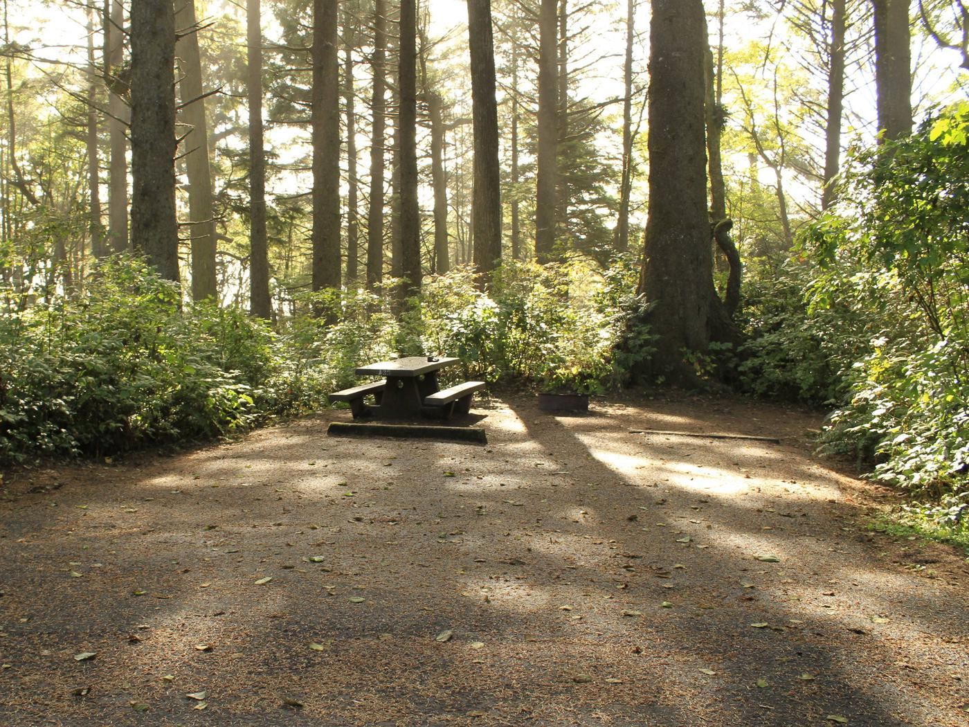 Picture of campsite with picnic table. Campsite A39