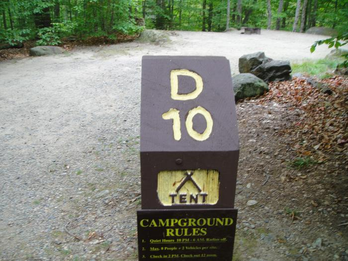 D10 - access to site