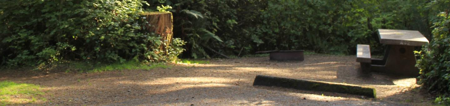 Picture of campsite with picnic tableCampsite A42