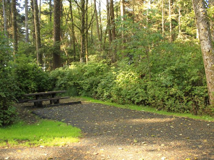 Picture of campsite with picnic table. Campsite A44
