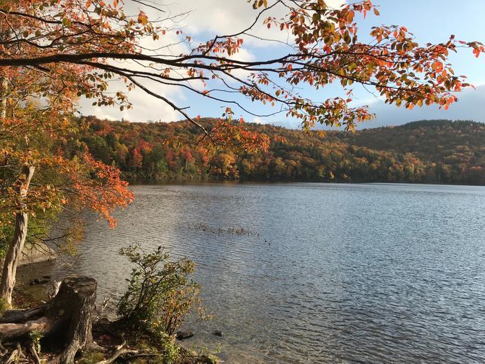 Pond in October