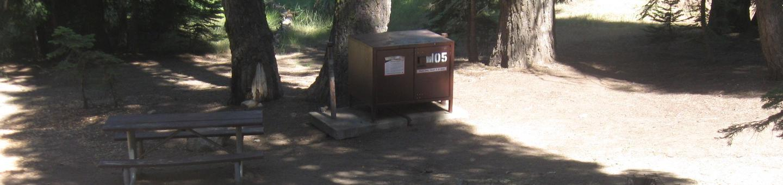 site 105, no generator loop, partial shade, pull through driveway