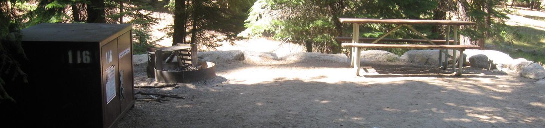 site 116, no generator loop, no tent site, partial shade