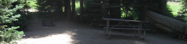 site 124, no generator loop, partial shade