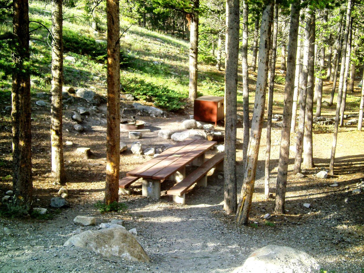 lp-site07-previewLimber Pine Site 7