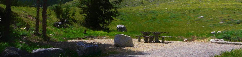 lp-heroLimber Pine