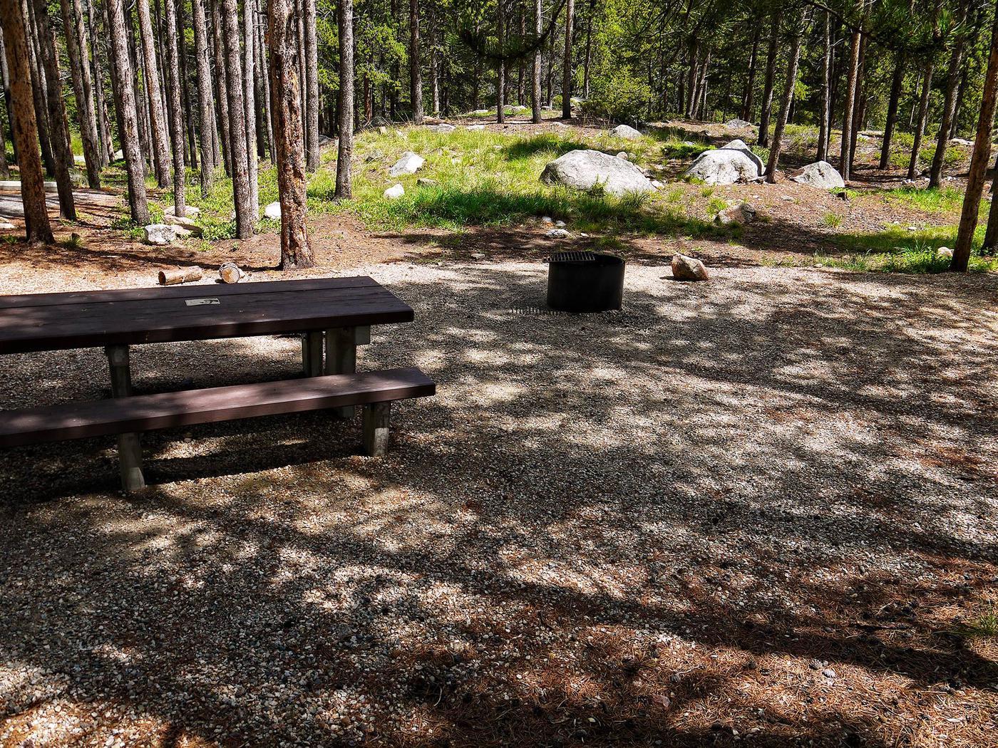lp-site03-previewLimber Pine Site 3