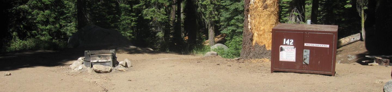 site 142, partial shade