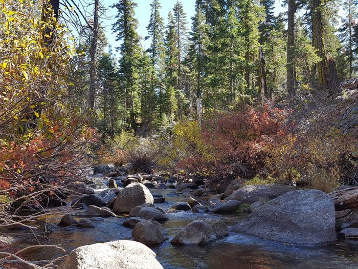 North Fork Yuba River at Sierra