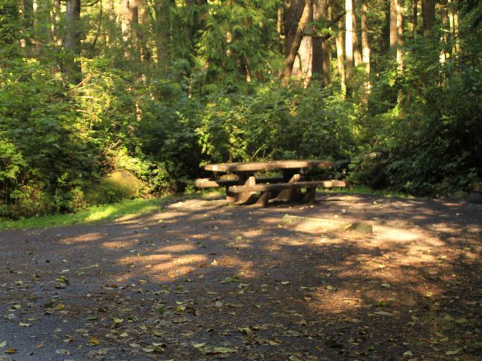 Picture of campsite with picnic tableSite A50
