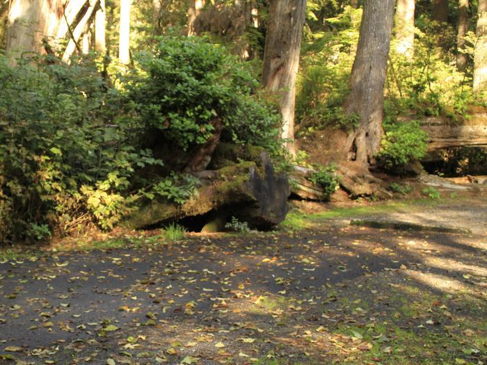 Picture of campsite pavementCampsite A52