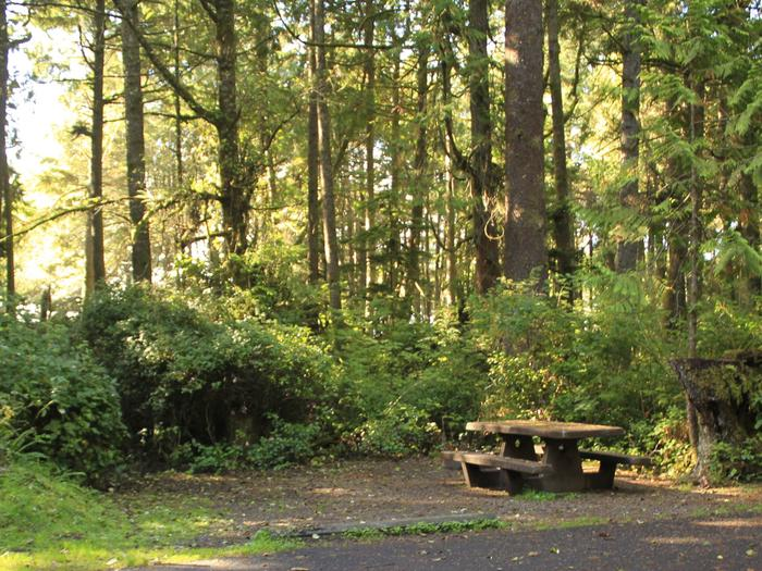 Picture of campsite with picnic tableCampsite A56