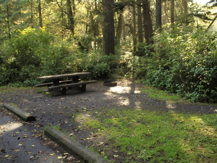 Picture of campsite with picnic tableCampsite A57