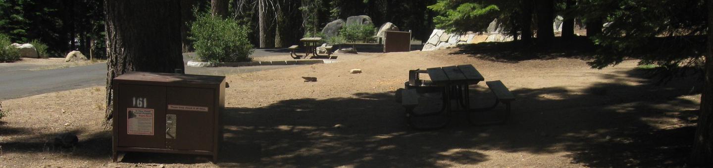 Site 161, sunny, near meadow